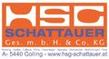 HSG Schattauer